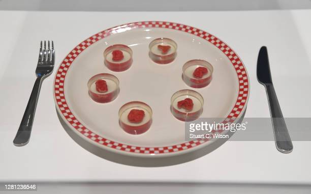 """Ouroboros Steak by Andrew Pelling, Orkan Talhan and Grace Knight on display during the """"Beazley Designs Of The Year 2020"""" photocall at Design Museum..."""