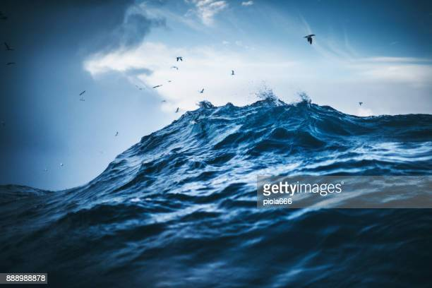 out in a rough north sea - tide stock pictures, royalty-free photos & images
