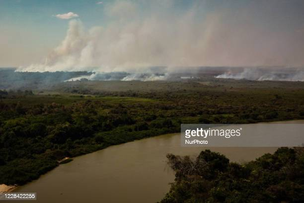 Out of control forest fire burns the area of the Brazilian Pantanal in rural Pocone, Mato Grosso, Brazil, on August 19, 2020 in the largest fire ever...