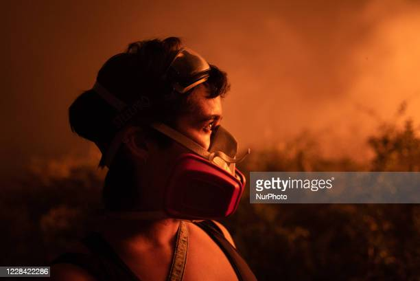 Out of control forest fire burns the area of the Brazilian Pantanal in rural Pocone, Mato Grosso, Brazil, on August 29, 2020 in the largest fire ever...