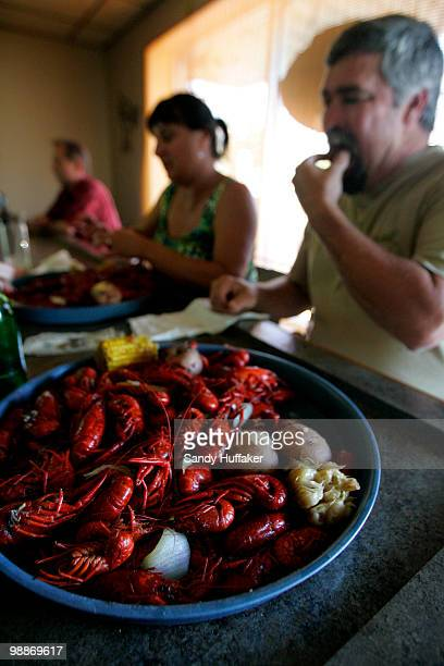 Out of work fishermen eat crawfish at Lou's Bar and Grill May 4 2010 in Chalmette Louisiana Many local fishermen have been temporarily shut down but...