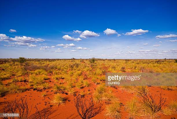 outback landscape showing the blue sky and orange sands - horizontal stock pictures, royalty-free photos & images