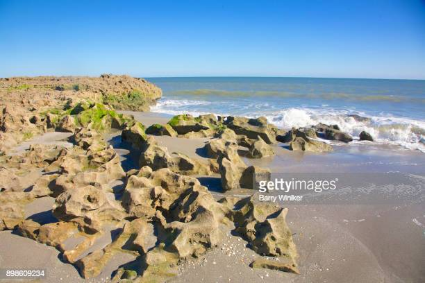 outcroppings at blowing rocks preserve on jupiter island - jupiter island florida stock photos and pictures