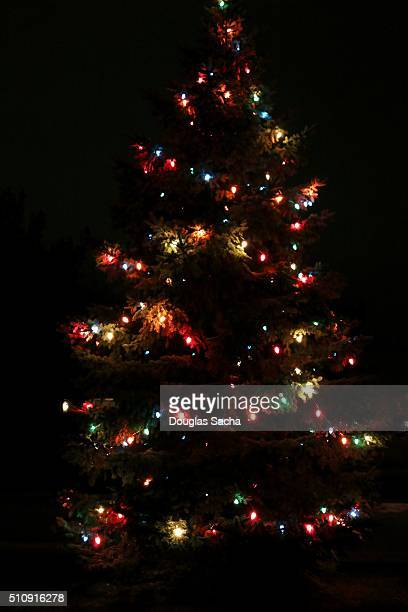 CNGLCEL450 Outdoor Christmas Tree