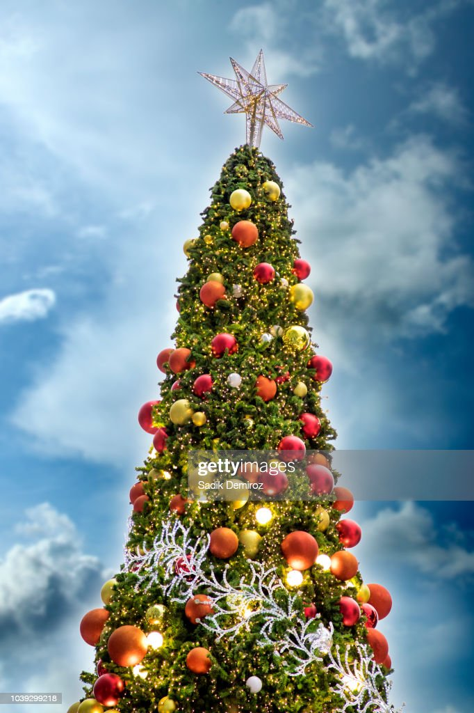 Outdoor Christmas Tree With Lights.Outdoor Christmas Tree With Colorful Lights And Ornaments Over