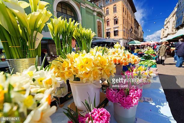 outdoor flower market in rijeka, croatia - rijeka stock pictures, royalty-free photos & images
