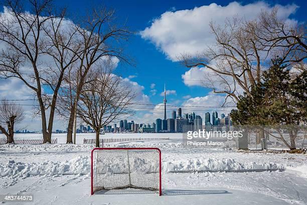 Outdoor hockey rink net and Toronto skyline