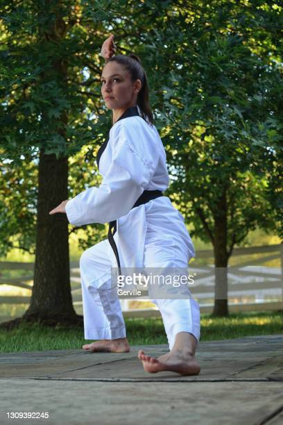 outdoor martial arts training - gerville stock pictures, royalty-free photos & images