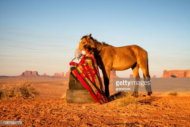 outdoor portrait of a beautiful navajo native american indian girl in the northern arizona desert on the monument valley indian reservation - apache indian stock pictures, royalty-free photos & images
