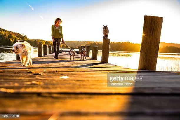 Outdoor with dogs in the nature by a lake, Canada