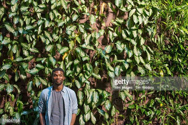 Outdoors in the city in spring. An urban lifestyle. A man standing in front of a wall covered in climbing plants and ivy.