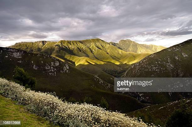 outeniqua pass, george, south africa - bergpass stockfoto's en -beelden