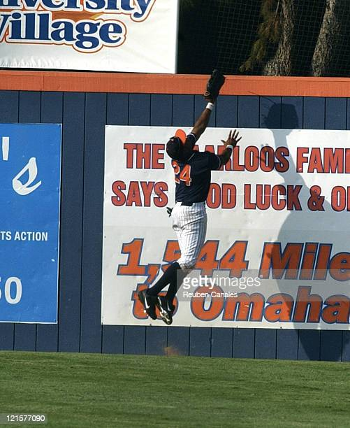Outfielder Bobby Andrews of the Titans dives for a home run ball in a 9 to 8 victory in the NCAA Fullerton SuperRegional of the 4th ranked Cal State...