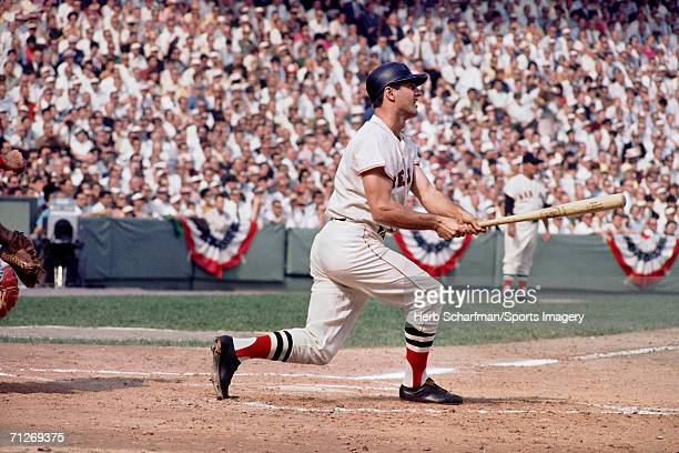 Outfielder Carl Yaztrzemski of the Boston Red Sox bats during a 1967 World Geries game in Fenway Park in October 1967 against the St Louis Cardinals...