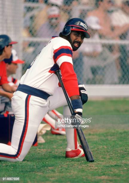 Outfielder Harold Baines of the Chicago White Sox kneels in the on deck circle during a Spring Training game in 1985 at Ed Smith Stadium in Sarasota...