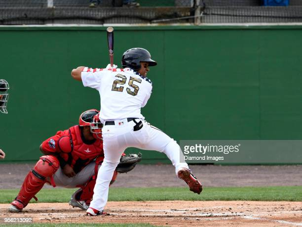 Outfielder Juan Soto of the Potomac Nationals singleA affiliate of the Washington Nationals at bat during the bottom of the first inning of a...