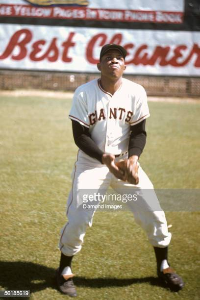 Outfielder Willie Mays of the New York Giants demonstrates his 'basket catch' during Spring Training on March 1957 in Phoenix Arizona