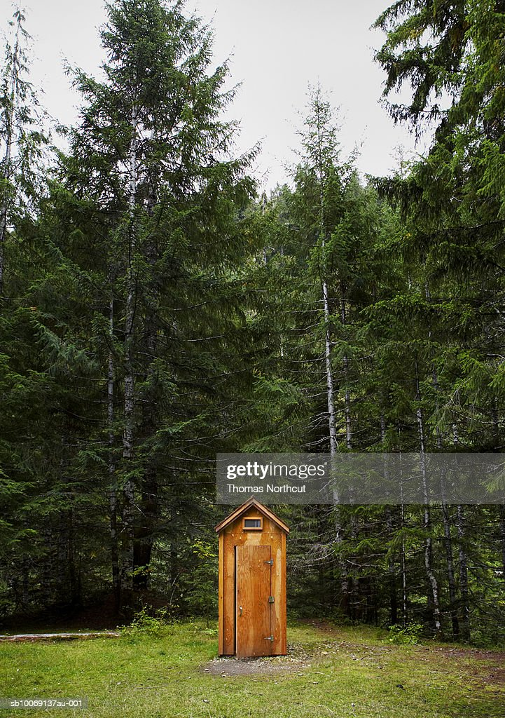 Outhouse in forest : Stockfoto