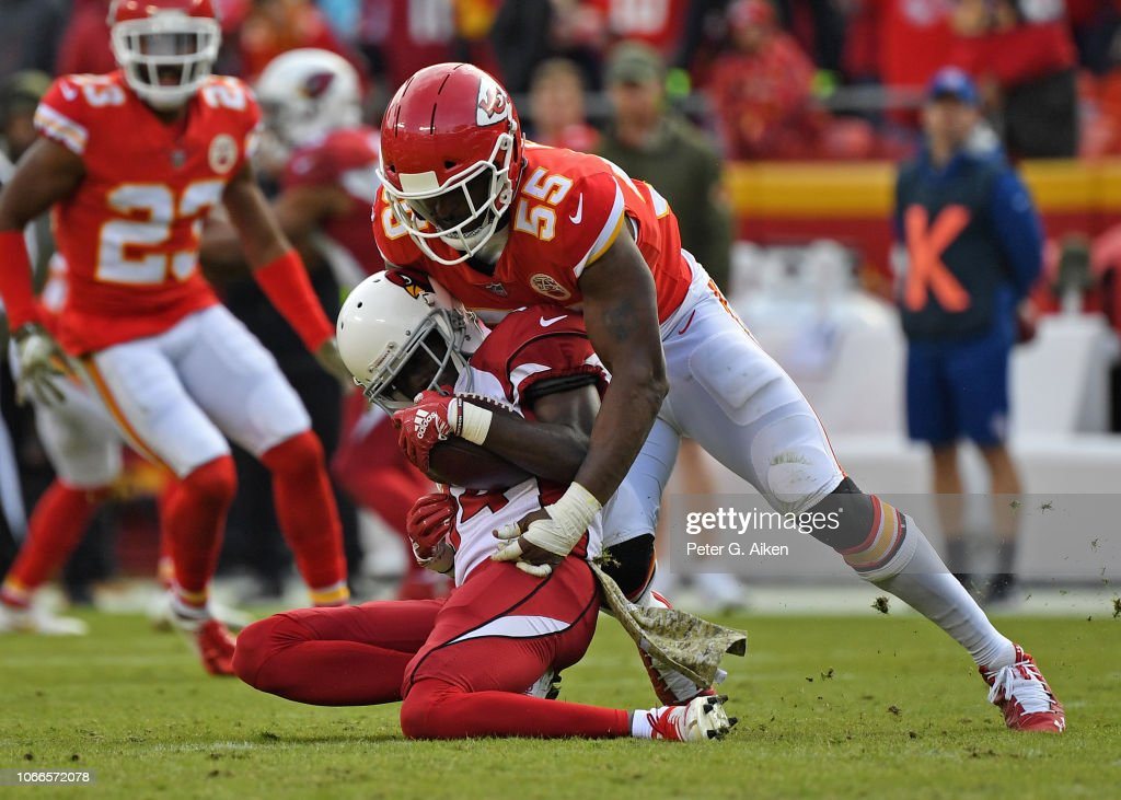 Arizona Cardinals v Kansas City Chiefs : ニュース写真