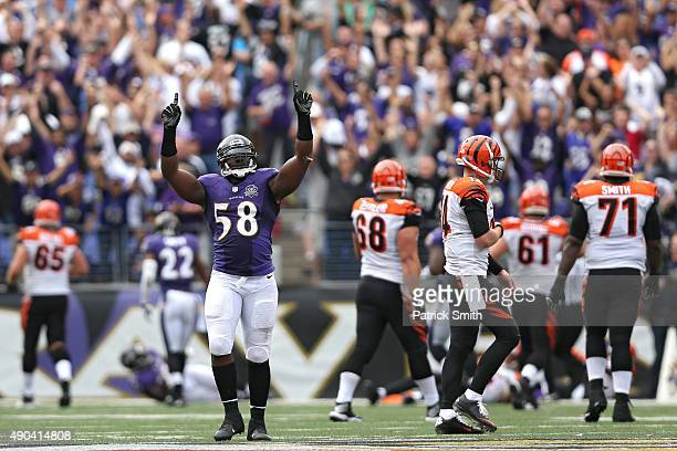 Outside linebacker Elvis Dumervil of the Baltimore Ravens celebrates after sacking quarterback Andy Dalton of the Cincinnati Bengals that led a...