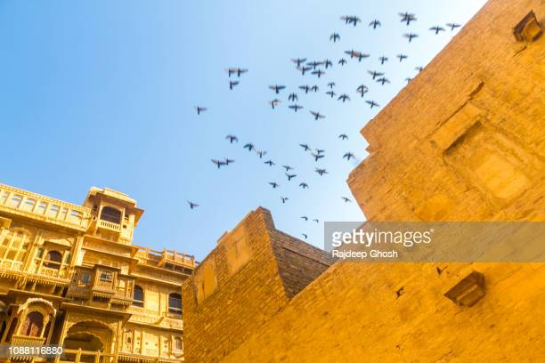 outside the havelis of jaisalmer - sandstone stock pictures, royalty-free photos & images