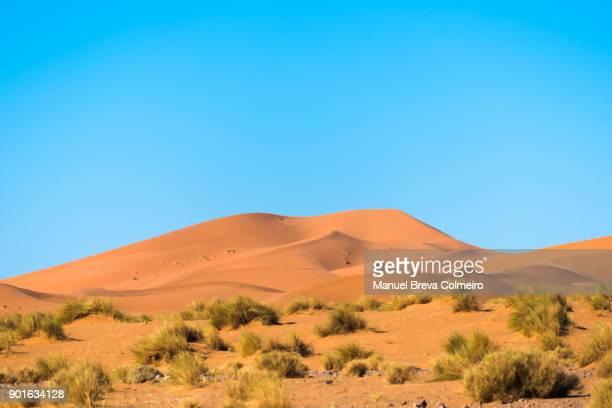 Ouzina desert
