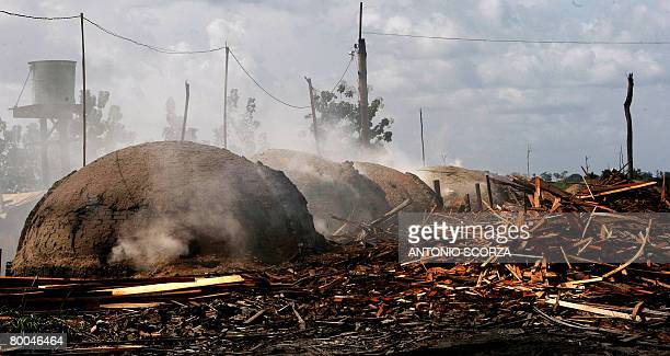 Ovens burn wood to produce charcoal in the outskirts of Tailandia Para northen Brazil on February 27 2008 The Brazilian government launched a...