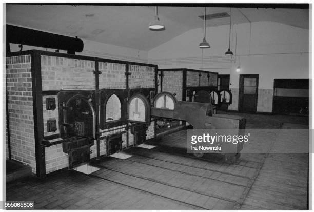 Ovens in buchenwald crematorium The ovens at Buchenwald concentration camp's crematorium The camp had no gas chambers but approximately 50 000 of the...