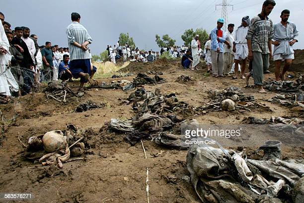Over 2800 bodies have been dug up in a mass grave near the town of Hilla Iraq A good portion of the bodies still had identificatiion on them Once the...