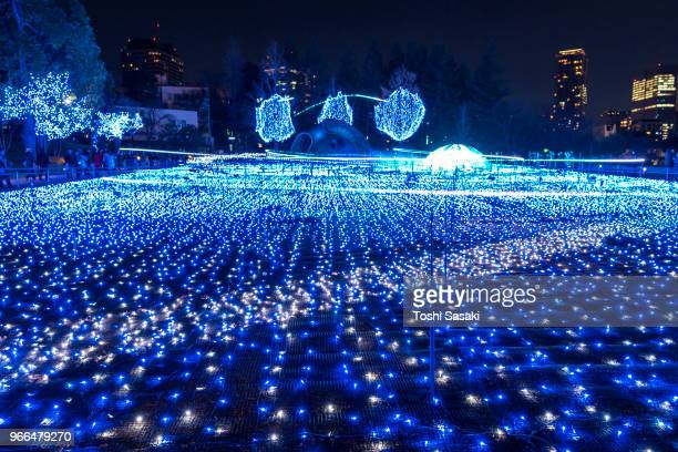 Over 500,000 LED lights are displayed in the Starlight Garden (Grass Square) and glow in the night in Roppongi Tokyo on December 21 2017. People are watching and photographing illumination.