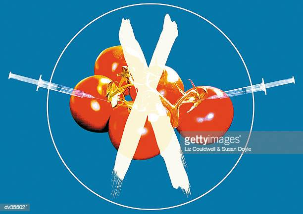 X over hypodermic needles injecting tomatoes