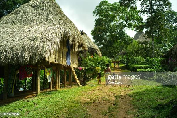 Over the last quartercentury a few Embera families pushed further north of Darien settling in the jungles bordering the Chagres River a scant twohour...