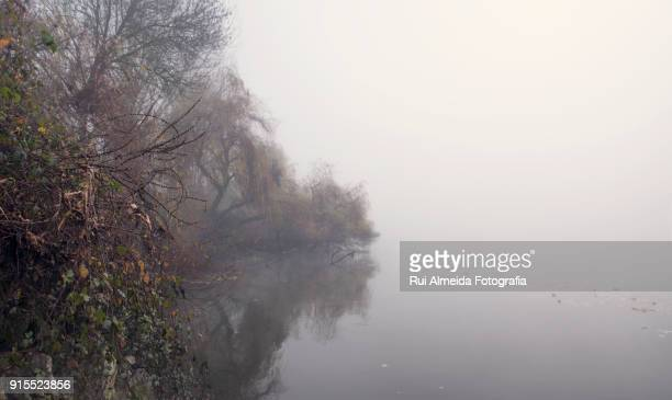 Over the river in the winter morning