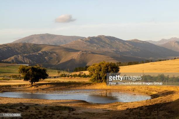 overberg, caledon, western cape, south africa, overview of a waterhole on a farm - overberg stock pictures, royalty-free photos & images