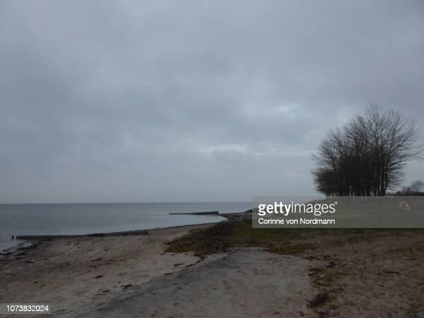 overcast baltic coastline - corinne paradis ストックフォトと画像