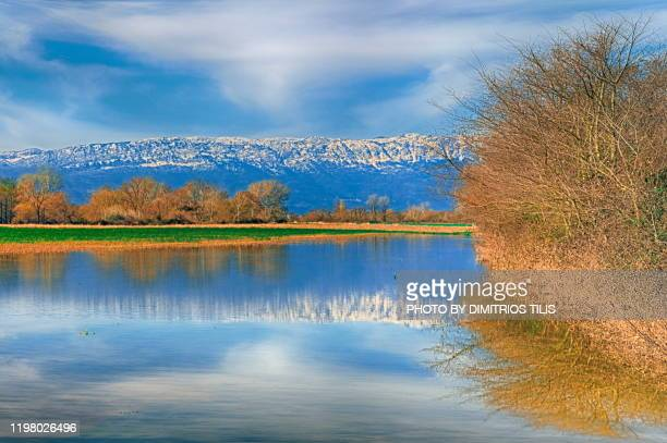 overflowed pinios river 2 - dimitrios tilis stock pictures, royalty-free photos & images