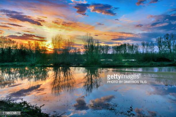 overflowed pinios river 3 - dimitrios tilis stock pictures, royalty-free photos & images