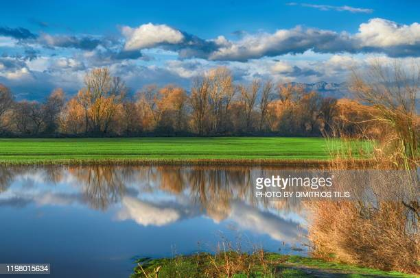 overflowed pinios river - dimitrios tilis stock pictures, royalty-free photos & images