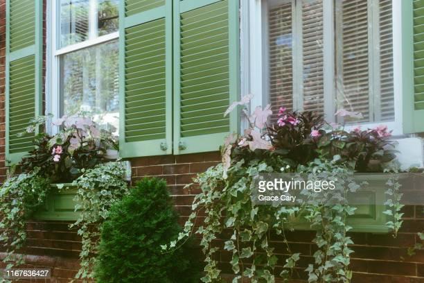 overflowing window boxes - バージニア州 アレクサンドリア ストックフォトと画像
