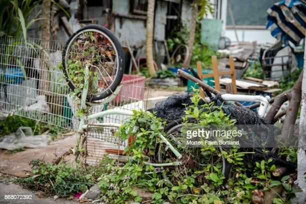 Overgrown Bicycle