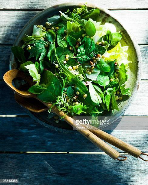 Overhead of green salad