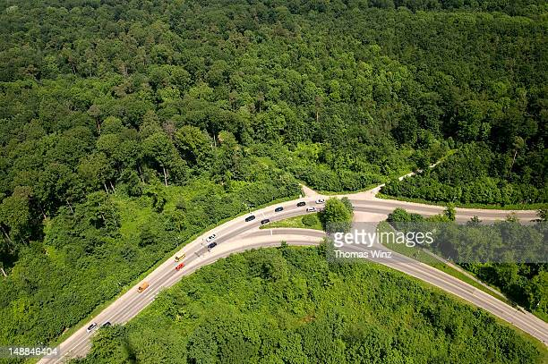 Overhead of roads cutting through forest from TV Tower.