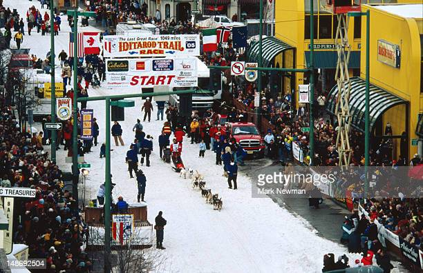 overhead of start of iditarod sled dog race. - iditarod stock pictures, royalty-free photos & images