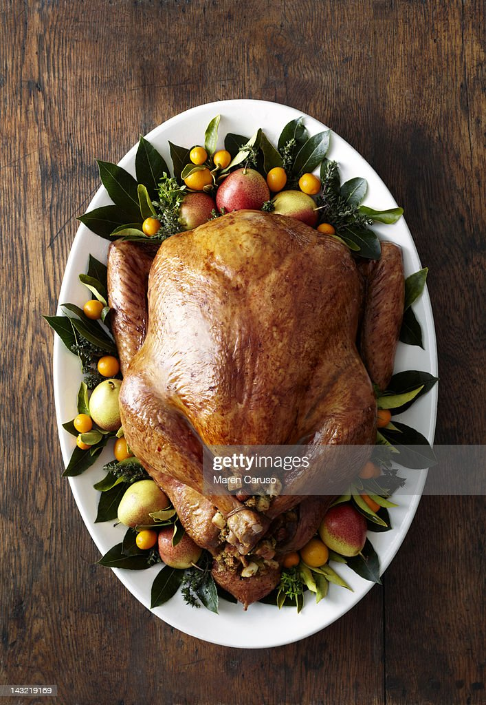 Overhead of turkey dish on wood surface : Stock Photo