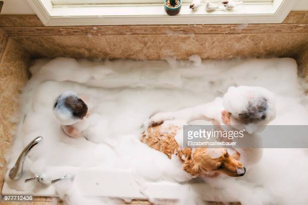 Overhead of two boys and a dog sharing a bubble bath