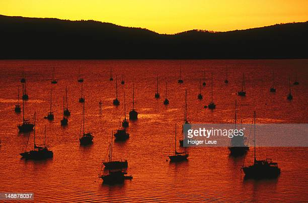Overhead of yachts at sunset, Able Marina.