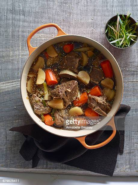 Overhead short rib stew with carrots and turnips