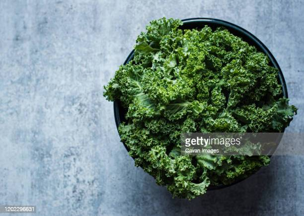 overhead view of a bowl of kale against a gray cement counter. - kale stock pictures, royalty-free photos & images