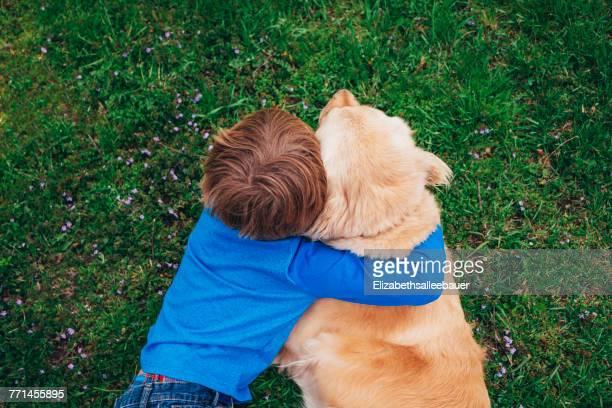 overhead view of a boy hugging his golden retriever dog - só um menino - fotografias e filmes do acervo