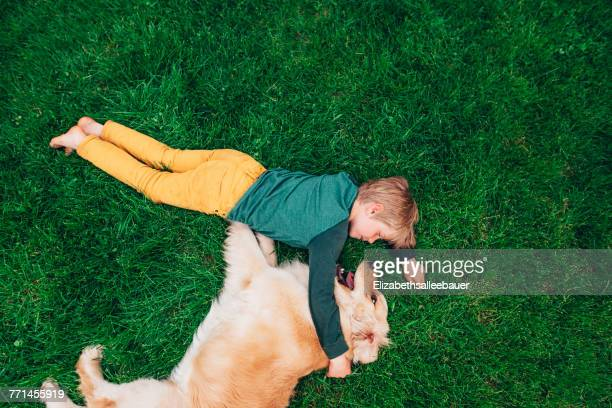 overhead view of a boy lying on the grass playing with his golden retriever dog - golden retriever photos et images de collection